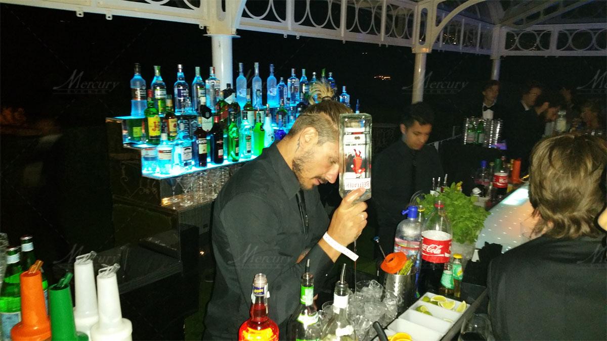 Mixology Bartender